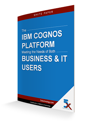 Cognos-Business-IT-Users